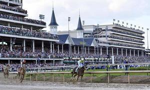 bet horse races
